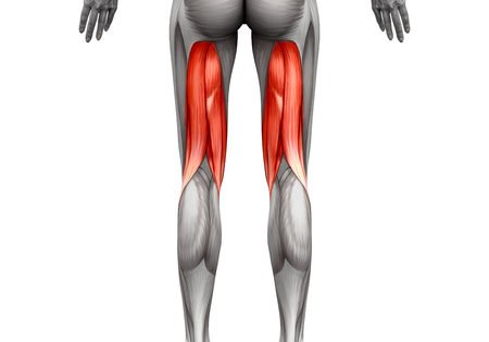 Do You Have Tight Hamstrings?