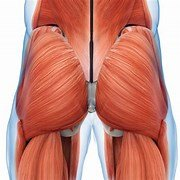 "CAN YOUR GLUTES SIMPLY ""SWITCH OFF""?"